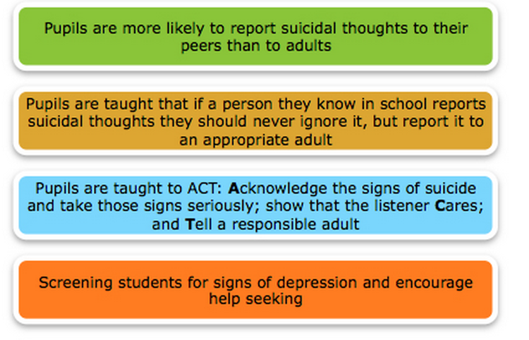 Self Harm Information for Students